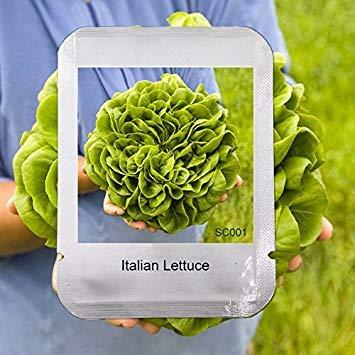 Bricolage à SaladeDe Goã»tFacile ProfessionnelGrand Cho CultiverPaquet Geoponics Italiennes Accueil Graines Bon 100 Jardin A4L3R5j