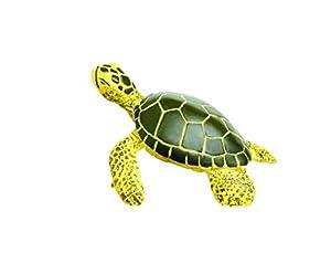 Safari S201329 Sea Life Green Sea Turtle Baby Miniatura