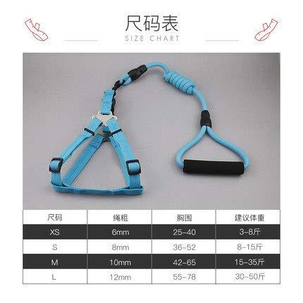 shmhy Cartoon Glocke Kragen Lanyard Halskette Pet Leine Pet Supplies hellblau + hellblaue Farbe Xs-1.0