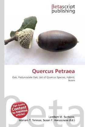Quercus Petraea: Oak, Pedunculate Oak, List of Quercus Species, Hybrid, Acorn