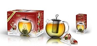Creano Fleurs de thé Jumbo Thé Blanc avec verseuse en verre