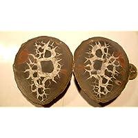 Meine schönsten Septarien, Paar, 374,90 g schwer, mit wunderschöner Zeichnung, Farben und Strukturen. Made by... preisvergleich bei billige-tabletten.eu
