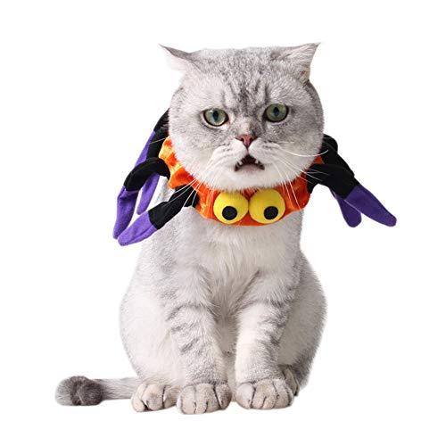 Katzenhalsband Spinnenkatze, für Festivals, Partys, Cosplay, Urlaub, weich, süß, für Kleine Welpen ()