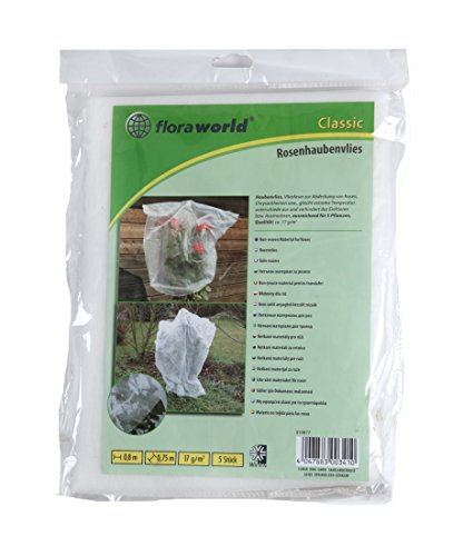 Floraworld 010877 Rose 312T envlies Lot de 5 Classic, Blanc, 80 x 75 x 37 cm