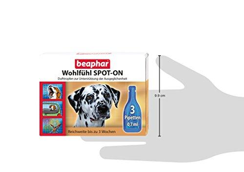 Nobby 75358 Wohlfühl Spot-On für Hunde - 2