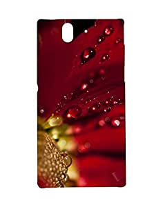Mobifry Back case cover for Sony Xperia Z Mobile ( Printed design)