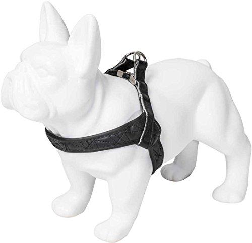 Karl Lagerfeld Haustier Kollektion für mittlere & kleine Hunde Premium Brustgeschirr Hundegeschirr,Farbe Schwarz,Größe M