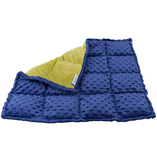 Harkla's Weighted Lap Pad for Kids (2.3kgs or 5lbs) - Great Sensory Compression Blanket for Children with Autism, ADHD, and Sensory Processing Disorder - Fidget Toys for School
