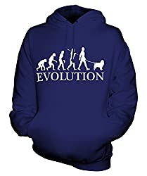 Candymix - Springer Spaniel Evolution Of Man - Unisex Hoodie Mens Ladies Hooded Sweater