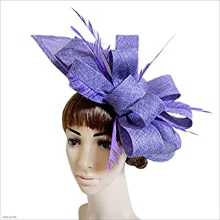 YHDD Girl Lady Lady Feather Hat Clip Wedding Cocktail Tea Party Hair Accessories (color : PURPLE)
