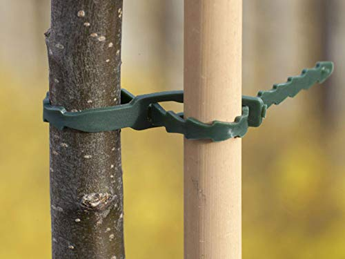 12 liens universels tuteurage PE vert 35 cm