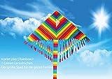 Scarlet Play | Einleiner Lenkdrachen »Rainbow I« mit Leine für 30 m Abstand; Größe: ca. 60 x 120 cm; Flugdrachen in Regenbogenfarben mit Streifenschwanz und Troddeln