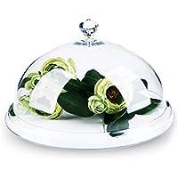 Cubierta de pantalla altamente transparente tapa para alimentos acrílico tapa para alimentos frescos Snack alimentos Cúpulas de tarta, 31cm(12inch)