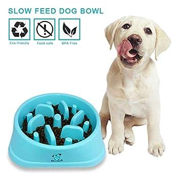 Decyam Gamelle antidérapante en Forme de Labyrinthe pour Animal Domestique - favorise Une Alimentation Saine et Une Digestion Lente (Blue 1)