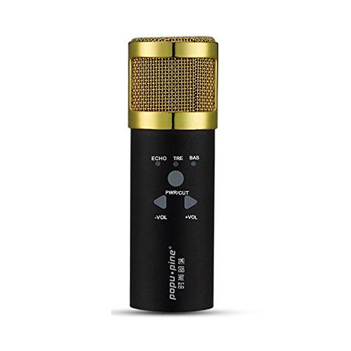 klim-mikrofon-schwarz-und-gold