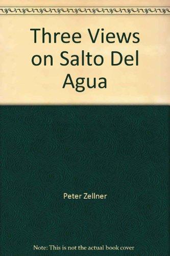 Vidokle Anton & Manzutto Cristian - Three Views on Salto Del Agua