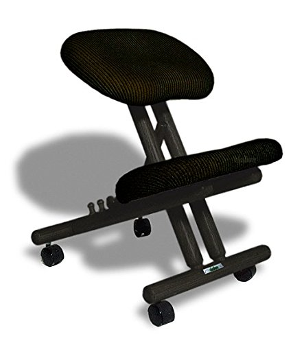 Cinius Chaise ergonomique professionnelle sans dossier...