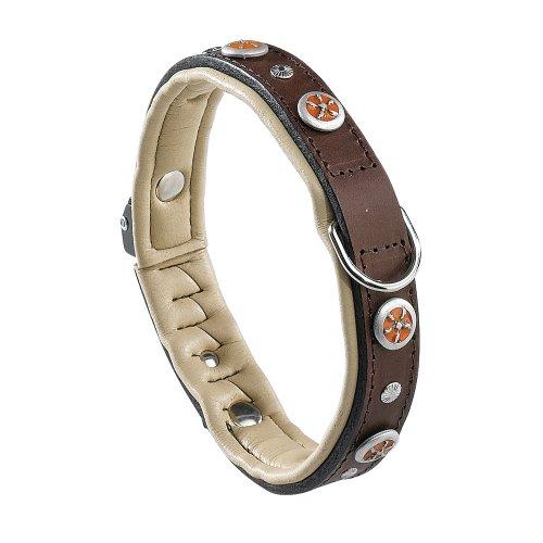 hundeinfo24.de Ferplast 76103058 Lederhalsband GIOTTO BW C 25/49, für Hunde, Breite: 2,5 cm, Halsumfang: 45-49 cm, braun mit Applikationen