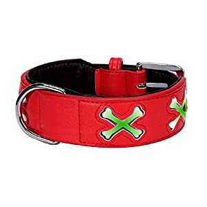 Malloom® Motif De L'os Collier De Chien Animal Lumineuse Fluorescente