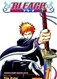 Bleach, Vol. 1: The Death and the Strawberry