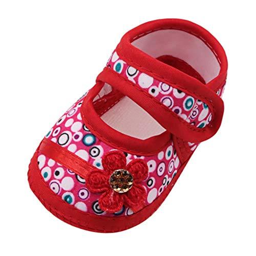 frauen turnschuhe soft schuhe mesh stoff wohnungen spitze schuhe laufschuhe sommer strand schuhe mode sandalen stilvolle
