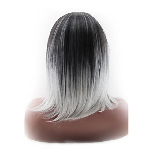 ROSENICE-Synthetic-Shoulder-Length-Fiber-Straight-Womens-Ombre-2-Tones-Full-Wigs-Black-Light-Gray