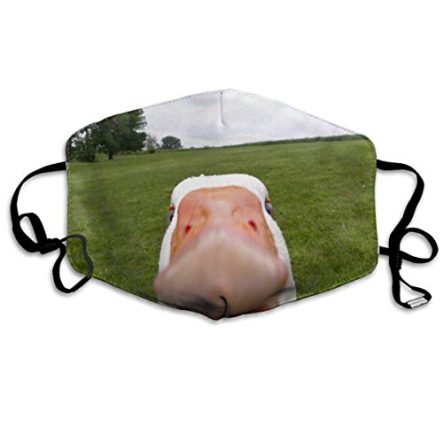Daawqee Mund Maske, Funny Animal Green Meadow Adult Fashion Anti Staub Schutzhülle Washable Safety 100{ef4f36405c834de349e2cd967f53ba11ce83229b2d3ae683b632d3d075d77bf3} Polyester Comfortable Breathable Health Half Face Masks