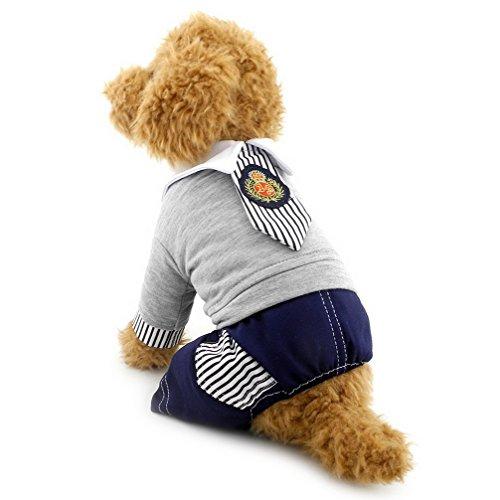 ranphy Kleiner Hund Jumpsuit für weibliche Stecker Student Freizeit Uniform Hund Kostüm Krawatte T-Shirt Hose Sommer Outfit