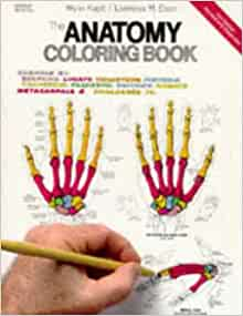 the anatomy coloring book 2nd edition amazoncouk wynn elson lawrence m kapit 9780064550161 books
