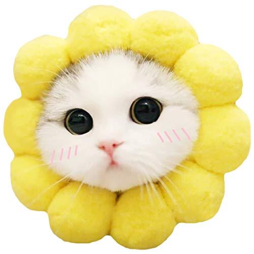 Sonnenblume Für Hunde Kostüm - Legendog Haustier Hut Sonnenblume Geformt Hund Hut Katze Hut Haustier Kostüm zum Party Cosplay
