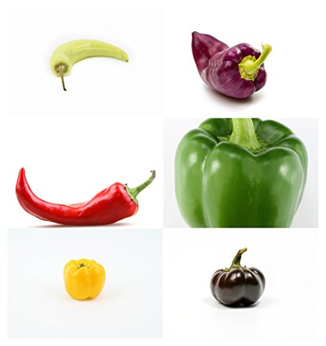 Paprika Mix - 6 Arten - je 10 Samen -sortenrein verpackt !