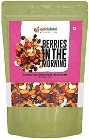 Nutriplato Dry Fruits Mix - Nuts Raisins & Berries, 340 g P