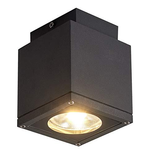 Dr.lazy 15W LED Deckenlampe für eine effektvolle Außenbeleuchtung, IP65 Wasserdicht, LED Deckenleuchten, Außen-Strahler, Spot Aussenleuchte, Garten-Lampe, Gartenleuchte (Grau/Warmweiß)