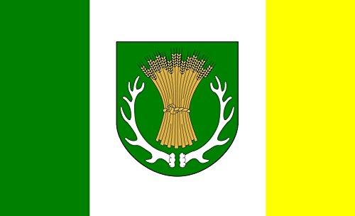 Preisvergleich Produktbild Flagge Gemeinde Ruja | Querformat Fahne | 0.06qm | 20x30cm für Diplomat-Flags Autofahnen