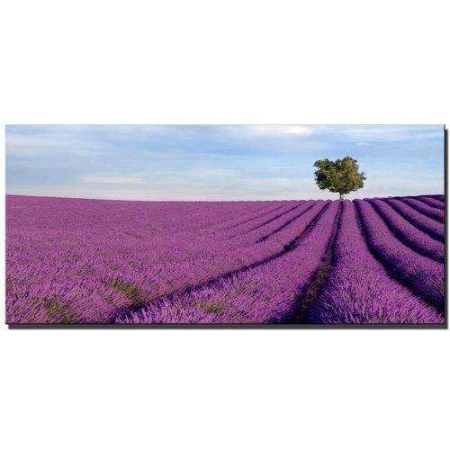 ABVERKAUF SONDERPREIS Wandbild auf echter Leinwand gerahmt (fields_of_lavender_130x70) Bilder fertig gerahmt mit Keilrahmen riesig. Ausführung Kunstdruck auf Leinwand. Günstig inkl Rahmen