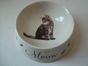 Silver Tabby Kitten Cat Feeding Bowl Best of Breeds from Widdop Bingham