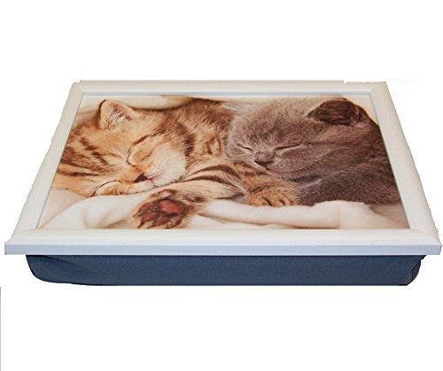 AS4HOME Knietablett - schlafende Kätzchen - lustiges Kissentablett Sofatablett Katzen - Lustige Kätzchen