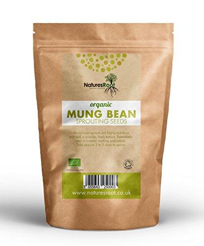 Natures Root Bio Mungbohne Sprießen Samen - Superfood | Nicht GVO | Microgreen Sprouts | Gartenpflanzen | Gemüsegarten (500g) -