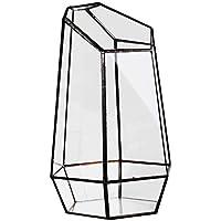 WOVELOT Florero de Vidrio Hexagonal de Invernadero de Casa para Cuota En Miniatura Mini-Paisaje