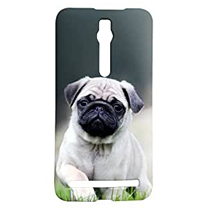 Fancy Interio Asus Zenfone 2 ZE551ML - A Seated Fawn Pug Puppy
