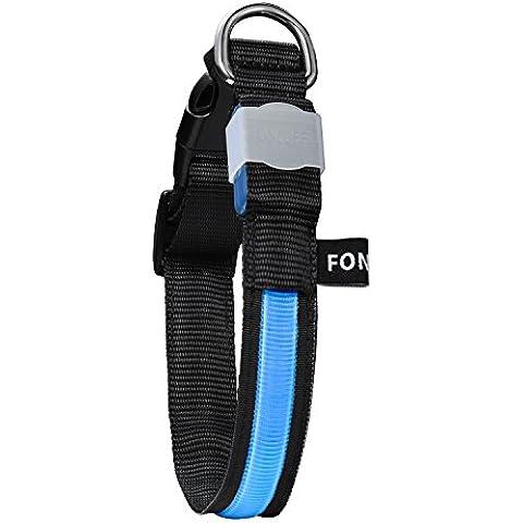 FONPOO FP5200 collar para mascotas impermeable con brillo de LED Flashing y batería reemplazable a prueba de tensión