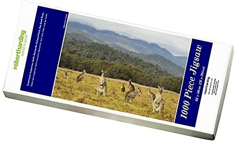 Photo Jigsaw Puzzle of Eastern grey kangaroos, Geehi, Kosciuszko National Park, New South Wales