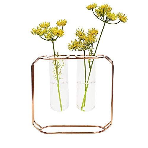 l Hydroponische Vase Mit Metallrahmen Verschiedene Größen Blumen Pflanze Glasvasen Dekorative Klare Vase Rohr Rose Gold Stehen for Zuhause Wohnzimmer Büro Party (Size : M) ()