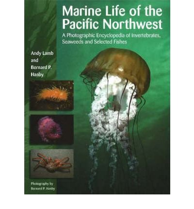 (Marine Life of the Pacific Northwest: A Photographic Encyclopedia of Invertebrates, Seaweeds and Selected Fishes) By Lamb, Andy (Author) Hardcover on 01-May-2006