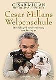 Cesar Millans Welpenschule: Die richtige Hundeerziehung von Anfang an - Cesar Millan, Melissa Jo Peltier