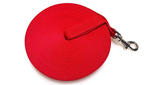 Maximum Pet Products 20ft 6M Dog amp; Horse Training Lunge Lead. 25mm - 1`` Wide. Very Strong (Red)