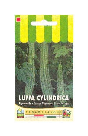 les-graines-bocquet-graines-de-luffa-cylindrica-eponge-vegetale-graines-potageres-a-semer-sachet-de-