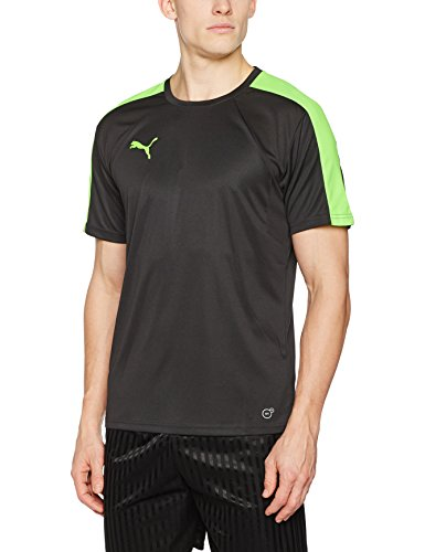 PUMA Herren IT Evotrg Training Tee T-Shirt, Puma Black-Green Gecko, M (Green Tee T-shirt)