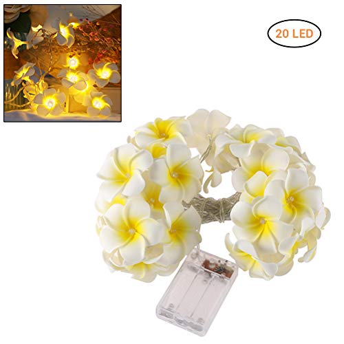 Weesey 3 Mt 20 Lampen Batteriebetriebene Fee Dekorative Lichter Plumeria LED Girlande Lichter Dekoration für Urlaub Party Wohnzimmer -