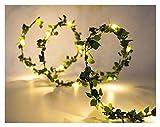 XIANGLIOOD 10 mètres fleur feuille de rotin guirlande à piles de cuivre LED fée guirlande lumineuse pour la décoration de mariage événement de fête